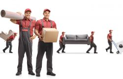 Mayzlin Relocation – Professional Packers and Movers
