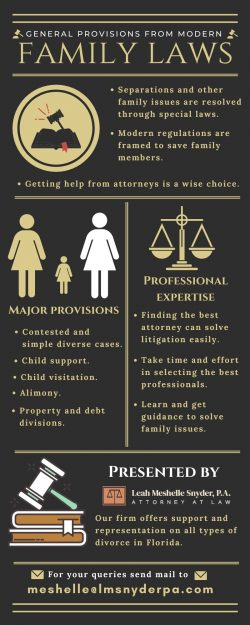 Experienced Lawyer for Your Family Needs