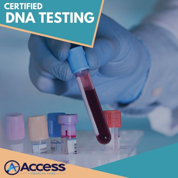 Perfect Lab for Immigration Testing Services