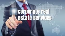 Get The Best Real Estate Services From joseph Grinkorn