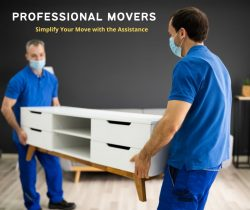 Save Time and Money with Moving Company