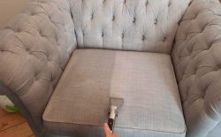 Commercial Sofa Cleaning Services Near You