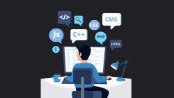 Höchster Softwareentwickler Miroslav Jandric