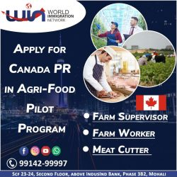 Apply Canada PR With CLB 4 & 5 – IELTS