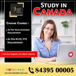 Assured Canada Study Visa. With Overall 6 Bands in IELTS/ / PTE🎓