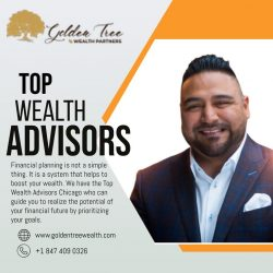 Top Wealth Advisors Chicago