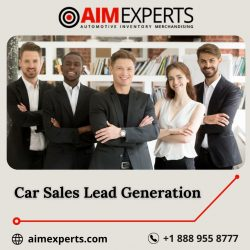 Know about Car Sales Lead Generation | Aim Experts
