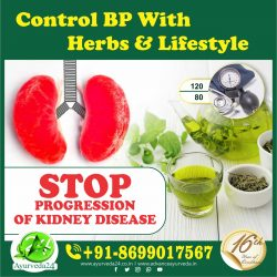 Control BP with Herbs and Lifestyle