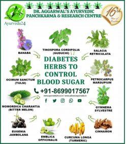 Herbs to Control Blood Sugar