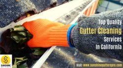 Get Top Quality Gutter Cleaning Services In California