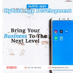 Hybrid App Development Company in Dubai