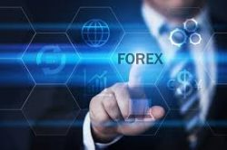 FXGM ZA   Forex Broker