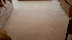 Carpet Cleaning Finglas