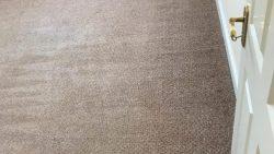 Carpet Cleaning Dublin 17
