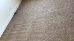 Carpet Cleaning Dublin 10