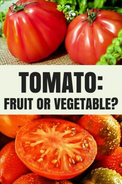 Are Tomatoes Fruit or Vegetable? | John Deschauer