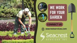 Gardening Work At your Frontyard