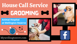 Quality Care for your Pets
