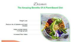 Plant Based Recipe Cookbook