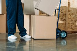 Movers in San Antonio: Blue Beaver Movers