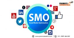 Why you need social media optimization services?