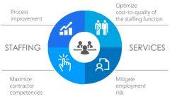 Services of IT Agency   Alex Averhoff