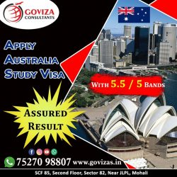 Study in Australia With 5.5 Bands in IELTS/PTE🇦🇺🇦🇺🇦🇺