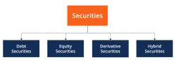 Types of Securities | Franklin I. Ogele