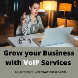 Grow your Business with VoIP Services