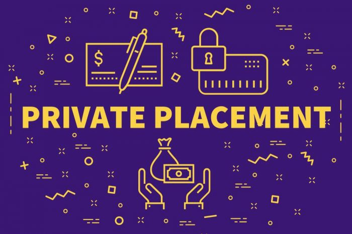 What Is Private Placements | Franklin I. Ogele