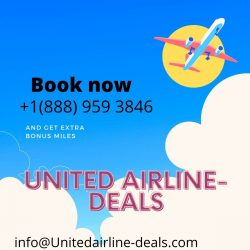 ual toll free number
