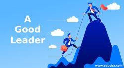Best Leader In Australia | Cassandra House
