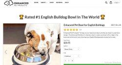 Best Slanted Dog Bowls