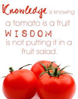 Tomatoes Are Fruit Not Vegetable – John Deschauer
