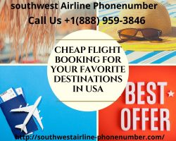 Cheap Flight Booking For Your Favorite Destinations In USA