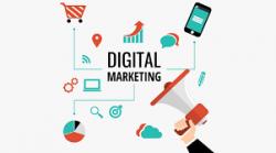 Best Digital Marketing Expert   Andrew Rudnick Boca Raton