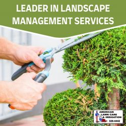 Effective Landscaping Designs and Installations