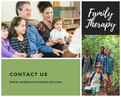 Hire The Best Family Therapy in North Chicagoland – Ammirati Counseling