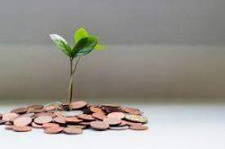 Use Fintech & Grow Your Business Savings – Ferhan Patel