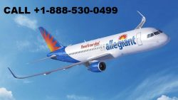 How do I talk to a person at Allegiant Air (+1-860-590-8822)