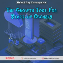 Hybrid App Development Company Dubai | Zapio Technology