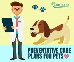 Improve the Overall Health of Pets