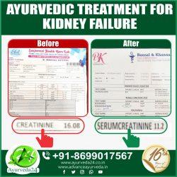 Kidney Treatment In Ayurveda