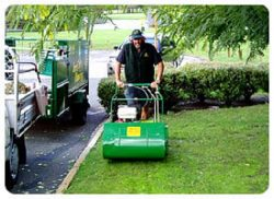 Great Lawn Maintenance Services in Perth