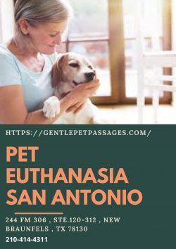 Pet Euthanasia San Antonio – Gentle Pet Passages