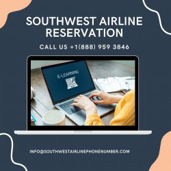 Cheap flight ticket with Southwset Airline
