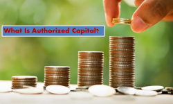 What Is Authorized Capital? | Franklin I. Ogele