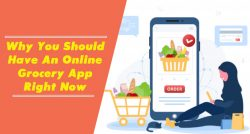 Get Best Online Grocery App Right Now from WEL Infoweb