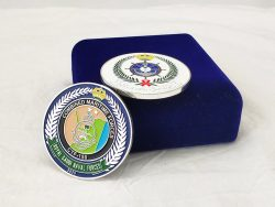 Custom Iron Stamping Soft Enamel Challenge Coins