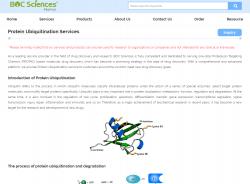 ubiquitination assay Protein Ubiquitination Services Protein Ubiquitination Ubiquitin services